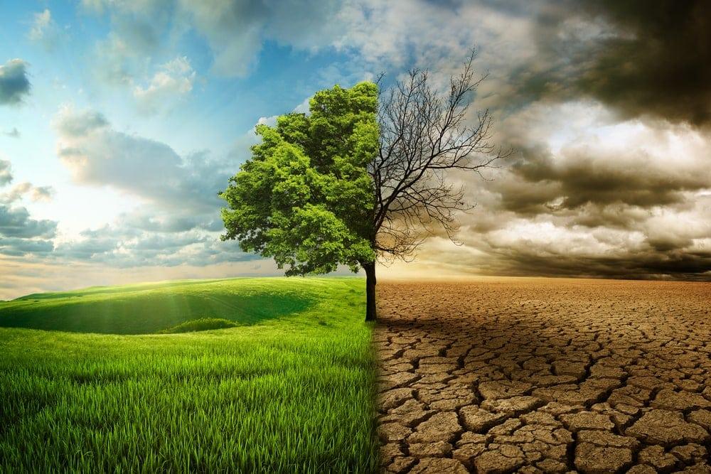 El cambio climático es una opción ética y moral